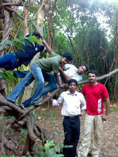 Pathiramanal island Alleppey