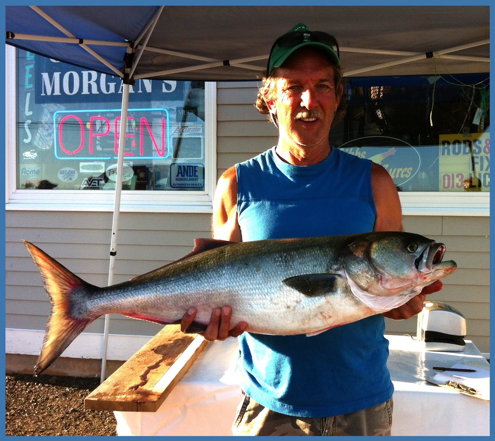 CT OUT-FISHES NY IN BLUEFISH CONTEST: NY IS BIG MONEY WINNER