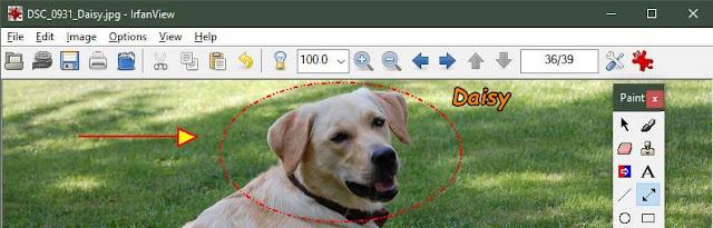 program pentru scris pe poze,program pentru modificat poze