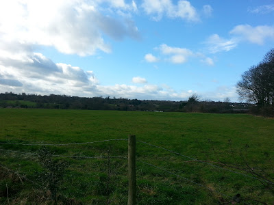 Views Across The Fields On The Little Woodcote Estate
