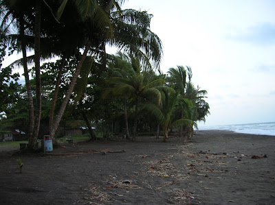 Playa desove de tortugas, Tortuguero,Costa Rica, vuelta al mundo, round the world, La vuelta al mundo de Asun y Ricardo, mundoporlibre.com