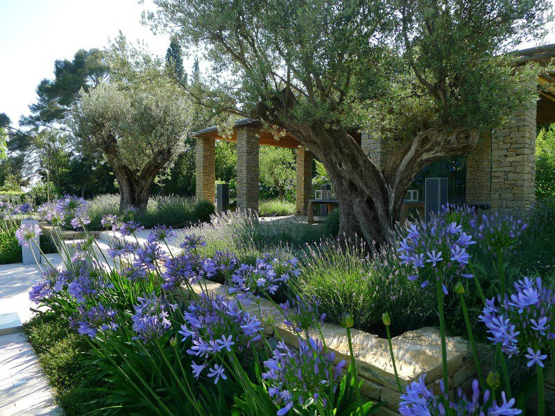 SGD Awards 2017 Gran Premio y premio Internacional | Tommaso del Buono | Château in Provence