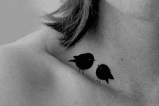 Aves Empoleiradas na clavícula