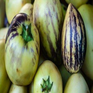 Manfaat Buah Pepino (solanum muricatum)untuk sehat