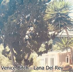 Baixar Música Venice Bitch