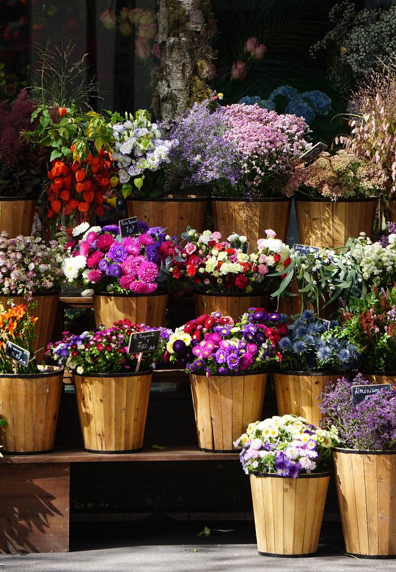 pariisi, kukkakauppa, matkailu, matkablogi
