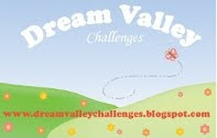 Top Three Pick at Dream Valley Challenges