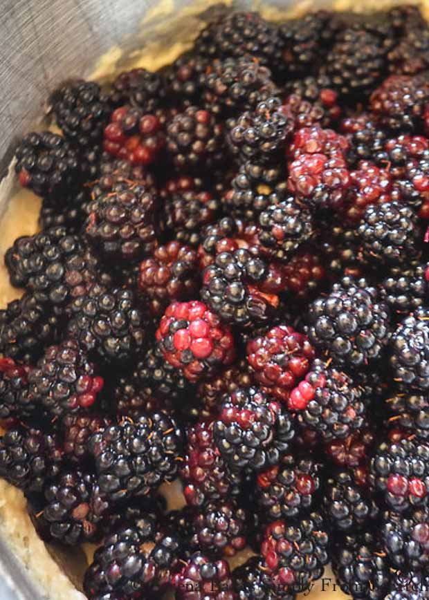 Fold blackberries into cake batter.
