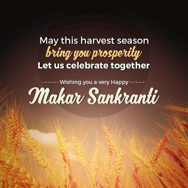 Happy makar sankranti images wallpapers hd makar sankranti happy sankranti wishes 2017 in english m4hsunfo