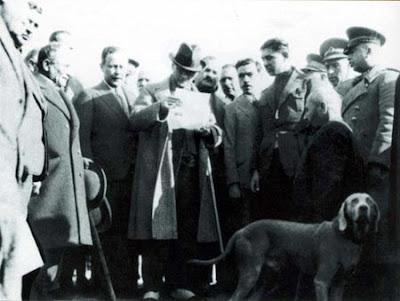 Foks Atatürk'ün köpeği
