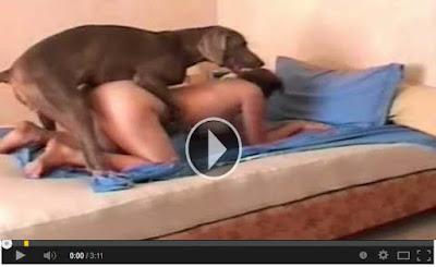 Dog women sex video