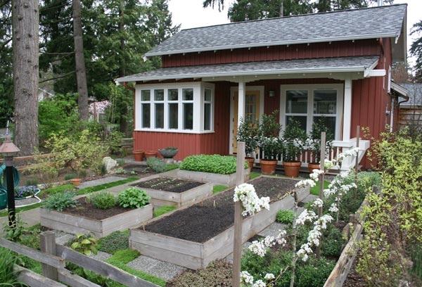 Bare Simplicity Tiny Living Big Home