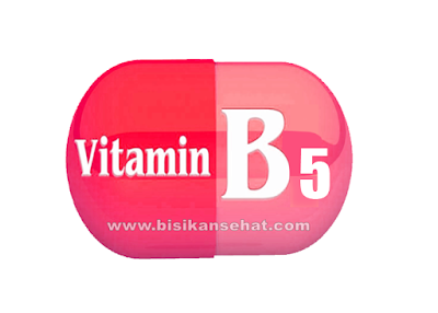 Manfaat Vitamin B5