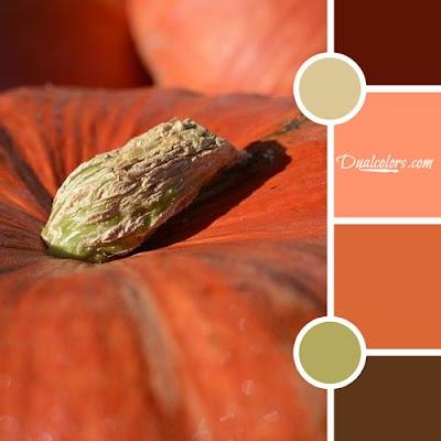 Variedad En Color MoodBoard 44
