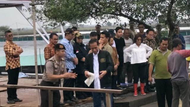 Jokowi Kepatil Udang, Praktisi Hukum: Maklum Minim Prestasi! Berita Apapun Jadi