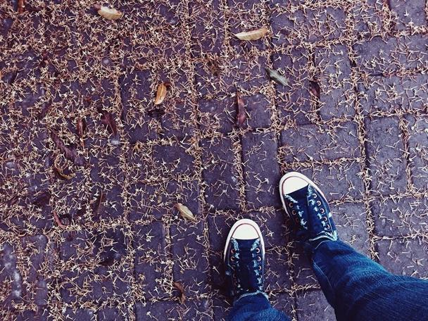 inverno, caminhos, pés, pessoas, folhas no chão, escolhas, fotos