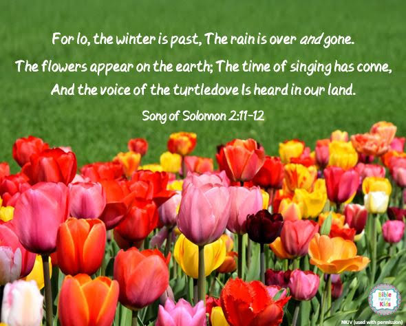 https://www.biblefunforkids.com/2019/05/the-flowers-after-winter.html