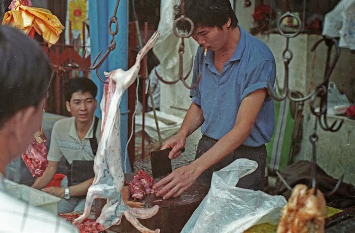 Canton, Guanzhou, marché Tiyun Lu, © L. Gigout, 1990