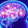 Scientists find that for first time Brain stimulation enhances long-term memory.