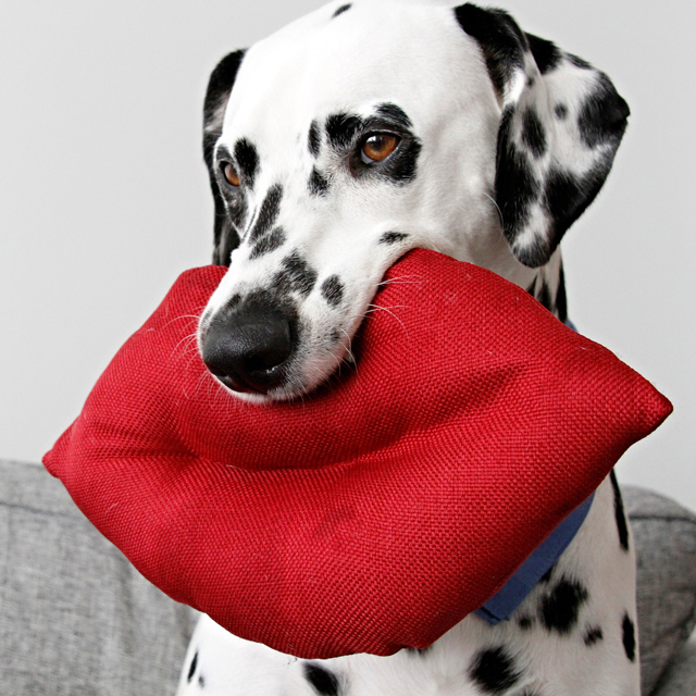 Valentine S Day Dog Toys : Dalmatian diy giant lips squeaky softie valentine s
