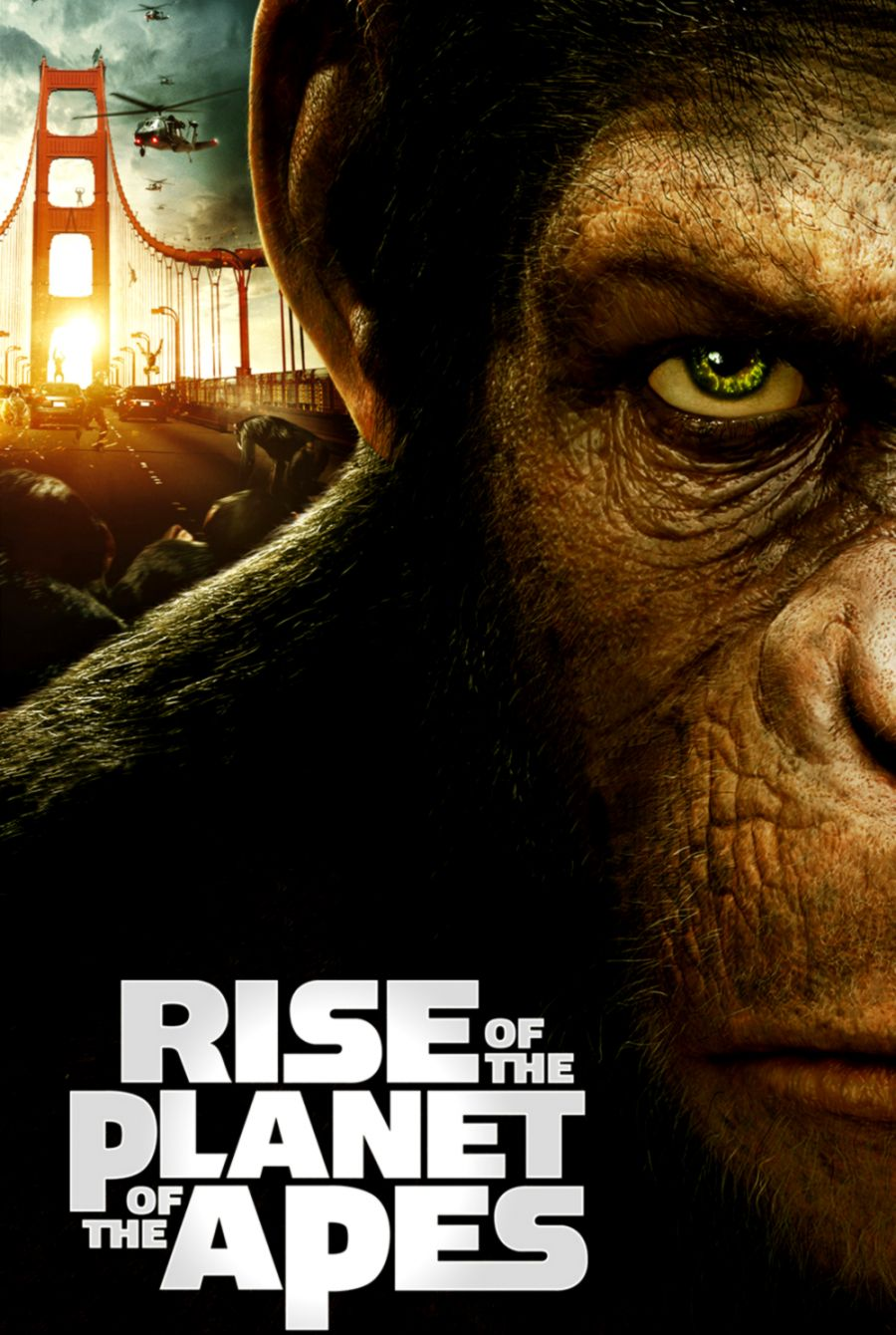 Rise Of The Planet Of The Apes Free Download Wallpapers