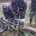 These Men Trying To Untangle A Bike From An Electric Fence Had Me In Stitches Laughing