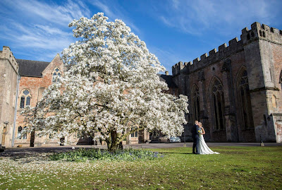 Our Spring Wedding | Somerset Suppliers