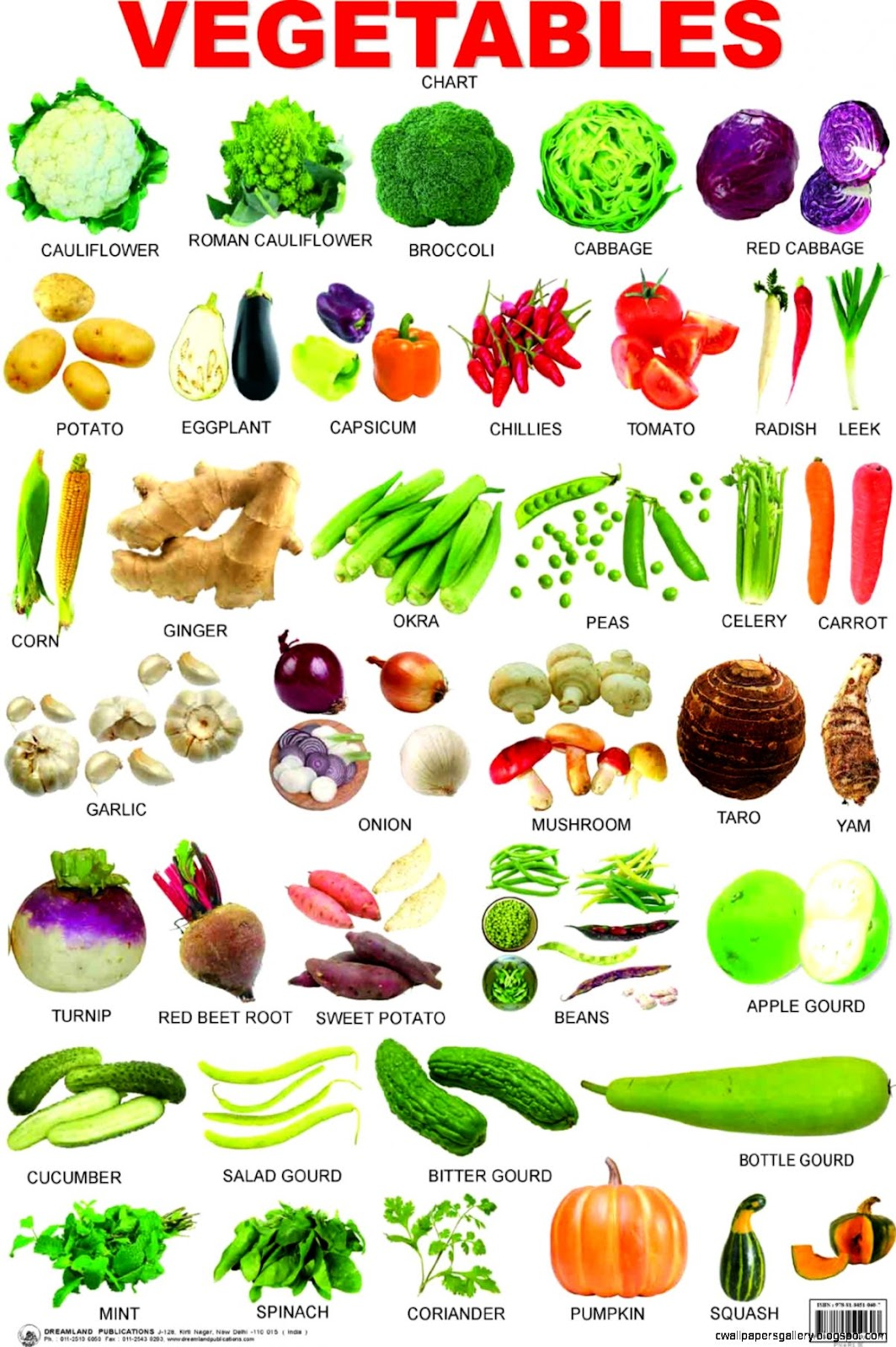Vegetable List A Z With Pictures | Wallpapers Gallery