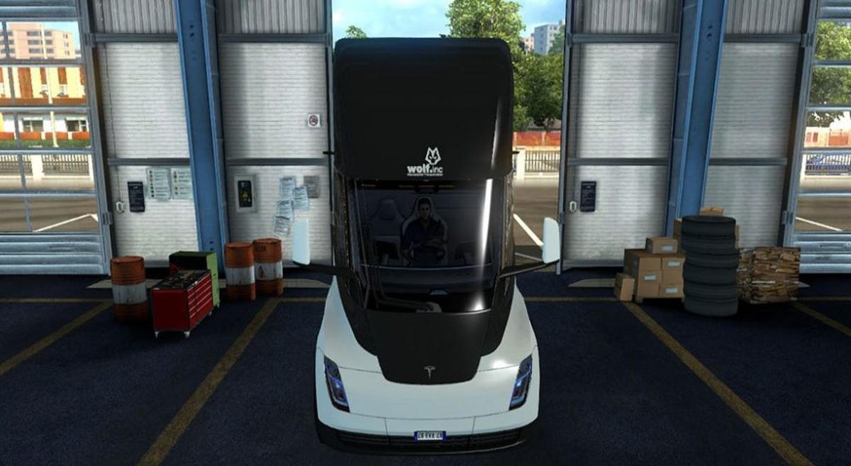 Tesla 2019 Repaintable Wolf Skin