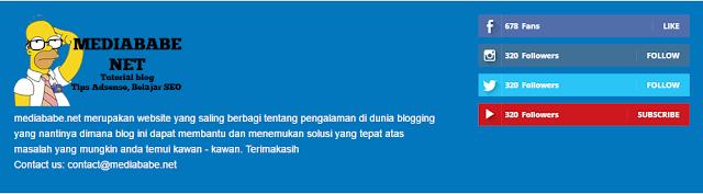Cara Membuat Dua Kolom Footer About dan Media Sosial Counter Di Blog
