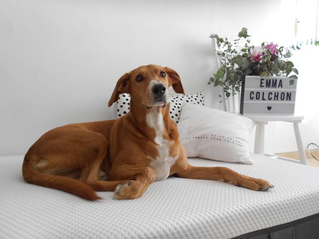 Nuestro nuevo descanso en familia: colchón Emma