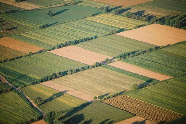Ανακοίνωση Δημοσιοποίησης Έρευνας Διάρθρωσης Γεωργικών και Κτηνοτροφικών Εκμεταλλεύσεων έτους 2016