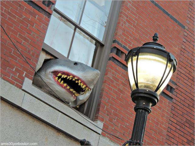 Decoraciones de Halloween en Massachusetts: Un Tiburón en una Ventana de Salem