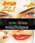 Zigzag Mission  زگ زیگ مشن  (Imran Fareedi Series)