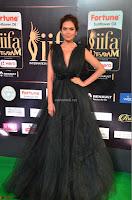 Esha Gupta in a Deep Neck Sleeveless Dark Green Gown at IIFA Utsavam Awards 2017     52.JPG