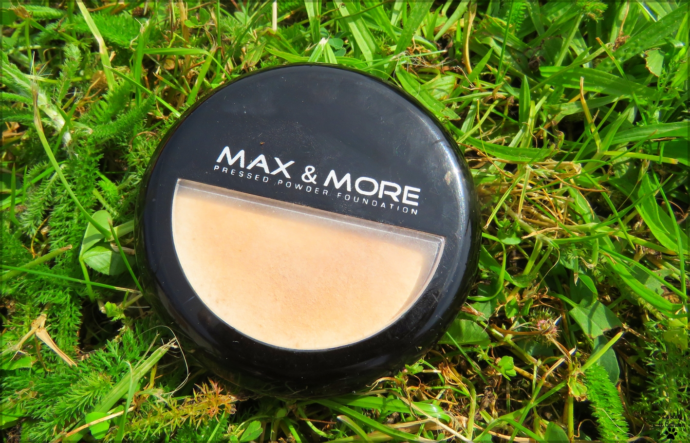 Pressed Powder Fondation - Poudre Compacte - Max & More