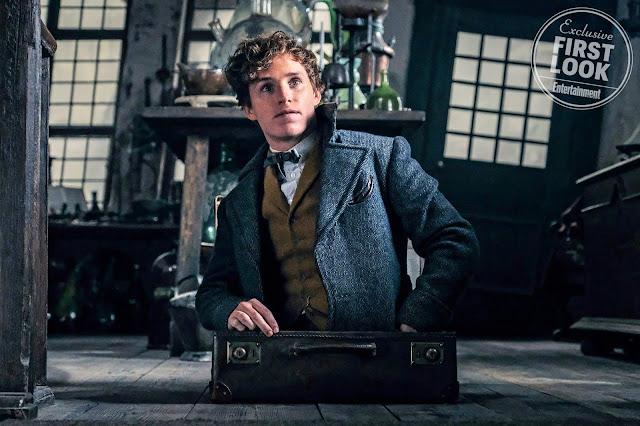 Nova foto mostra Newt saindo de sua maleta mágica | Ordem da Fênix Brasileira