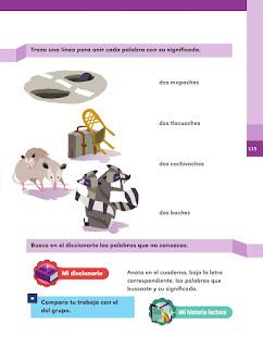 Apoyo Primaria Español 2do grado Bloque 3 lección 5 Dos mapaches