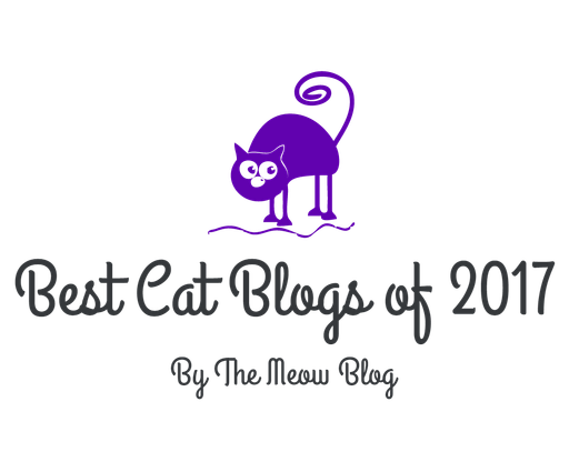 Best Cat Blogs of 2017