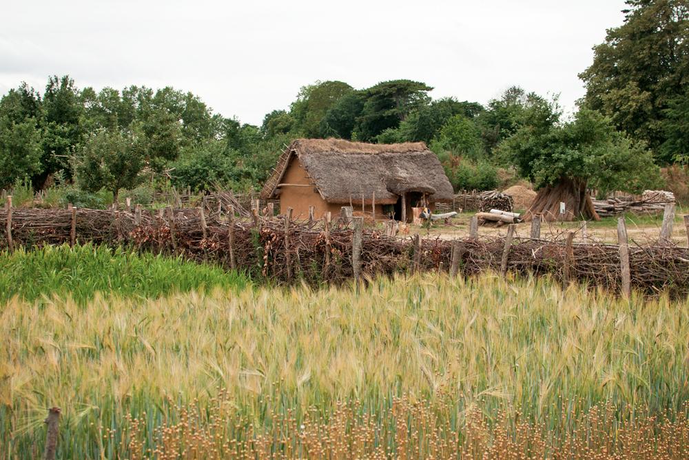 Maison carolingienne du parc historique d'Ornavik à Hérouville Saint Clair près de Caen