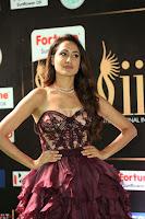 Pragya Jaiswal Sizzles in a Shantanu Nikhil Designed Gown  Exclusive 039.JPG