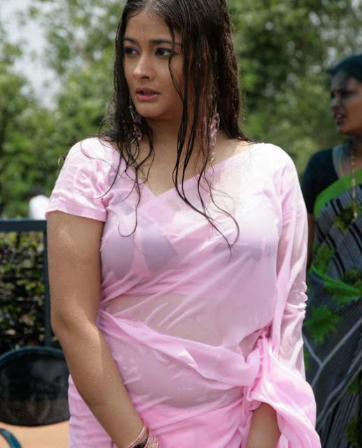 Malayalam Actresses Photos Kiran in saree