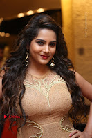 Actress Himaja Stills in Golden Spicy Long Dress at SIIMA Short Film Awards 2017 .COM 0315.JPG