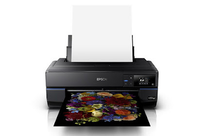 Download Epson SureColor P800 Driver Windows, Mac
