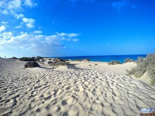 Fuerteventura désert
