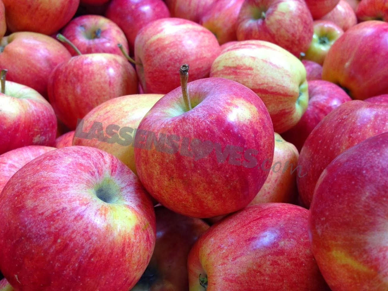 organic+apples, reject+GMO+apples, GMO+apples+approved