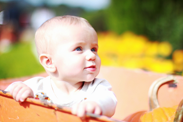 Fall baby pictures at the pumpkin patch