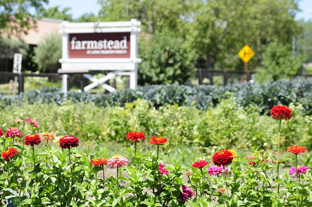 Visiting Farmstead garden