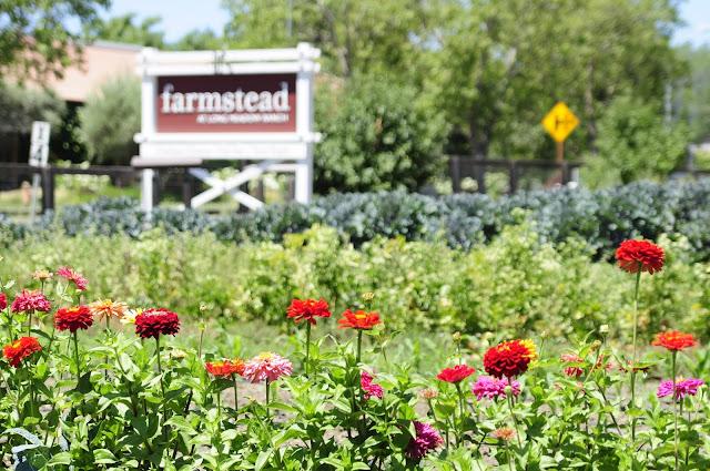 Visiting Farmstead garden