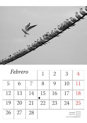 fotografia,pagina,calendario,animales,2018